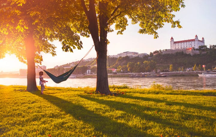 Natur am Ufer der Donau in Bratislava